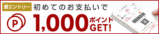 https://finance.jp.rakuten-static.com/rpay/img/campaign/508x110_20171108_SBC1000.png?v=20190318