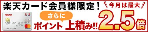 https://finance.jp.rakuten-static.com/rpay/img/campaign/508x110_20190731_portal.png